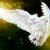 Аватар пользователя Lovett