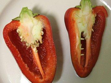 средеранний сорт перца толстячок