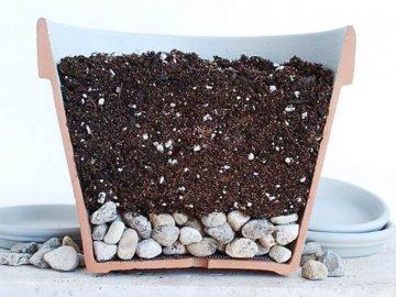 Подготовка емкости и почвы