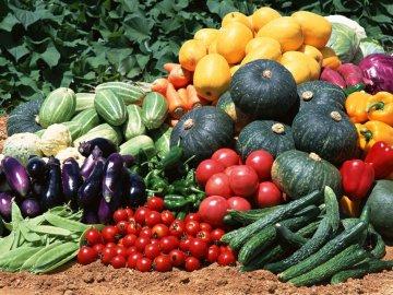 Преимущества тепличного выращивания