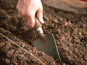 Готовим почву