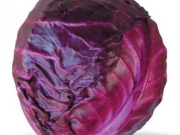 Общая характеристика синей капусты