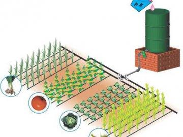 Организация полива на огороде