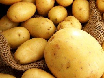 Этапы хранения корнеплодов