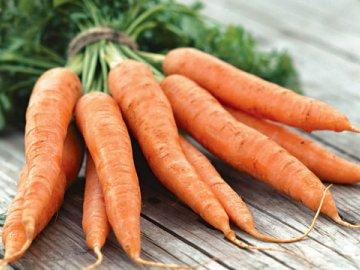 Технология возделывания моркови