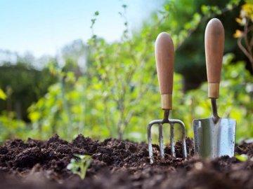 предупредительные меры борьбы с сорняками