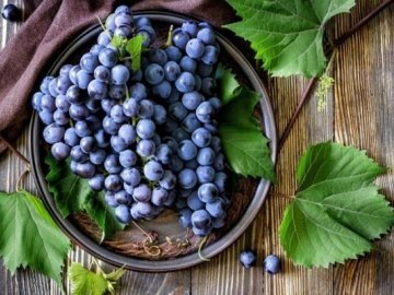 Хранение винограда зимой