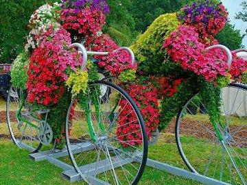Сложные цветочные клумбы