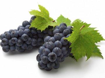 Ранние сорта винограда: характеристика видов