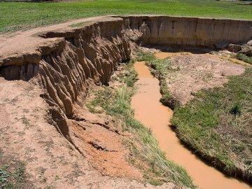 Причины эрозии почвы