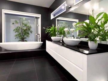 Подбор растений для ванной комнаты без окон