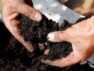 Биологический метод обеззараживания почвы