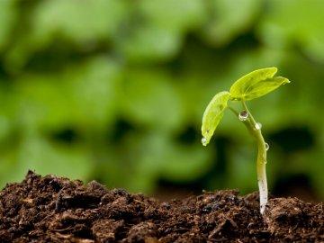 Дополнительные методы борьбы с эрозией