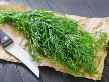 Применение укропа в кулинарии