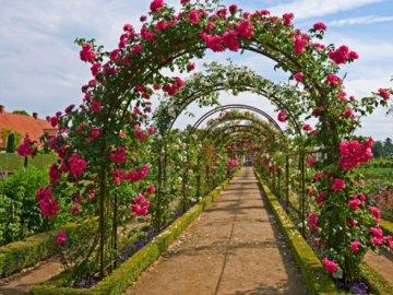 Арки своими руками для плетистых роз
