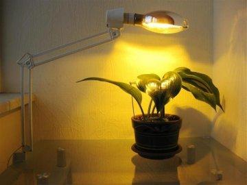 Исскуственное освещение для растений