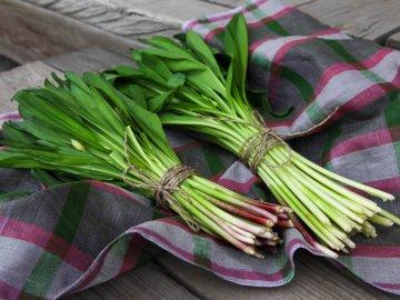 Сбор урожая, заготовка и хранение растения