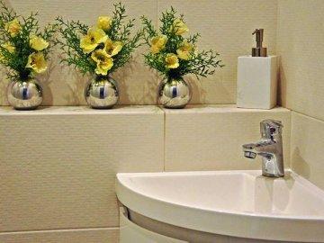 Цветы ванной комнате без окна