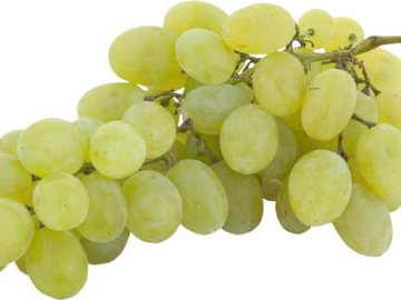 Описание сорта винограда Валентина