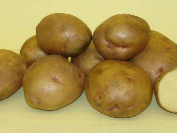 """Сорт картофеля """"Жуковский"""""""