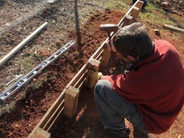 Выбор древесины для теплицы