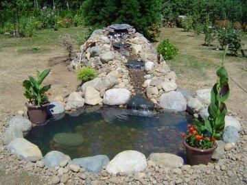 Проектировка и основные варианты размещения пруда