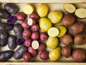 Какие сорта картофеля выбрать?