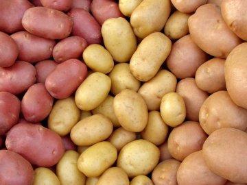 Описание картофеля разных сортов