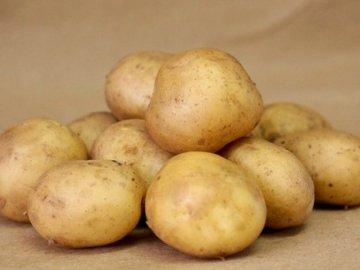 Сверхранние сорта картофеля
