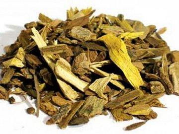 Полезные свойства корня барбариса