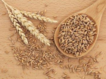 Требования к семенам