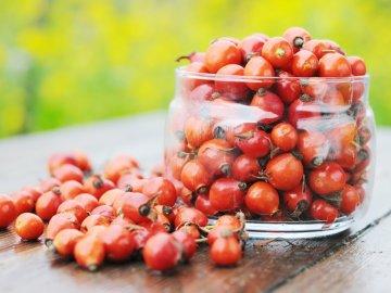 Могут ли плоды шиповника приносить вред