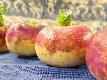 Виды и сорта корнеплода