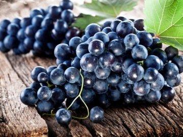 Состав, полезные свойства ягод