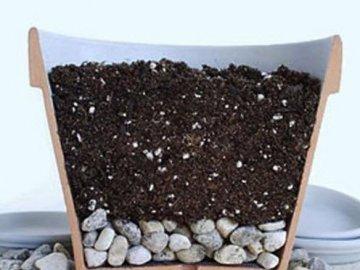 Правила посадки: подготовка почвы