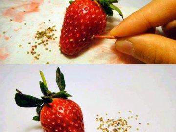 Размножение ягоды семенами: подготовка к процедуре