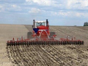 Подготовка почвы, сроки посадки растения