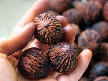 Польза ореха и его применение в медицине