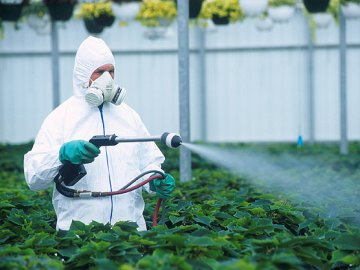 Пестициды: описание химического препарата