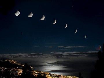 О фазах Луны, их влиянии на растения