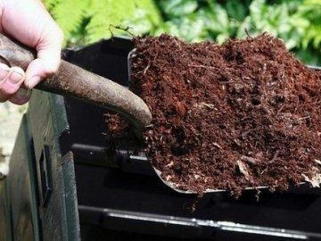 Как подкислять почву