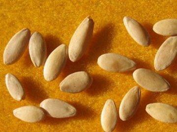 Семена рассады