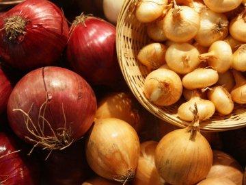 Особенности выращивания лука