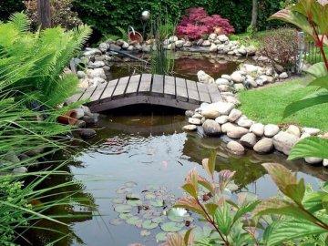 Чем можно украсить пруд?