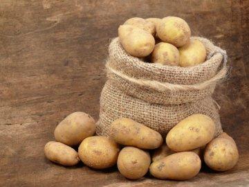 Способ посадки картофеля