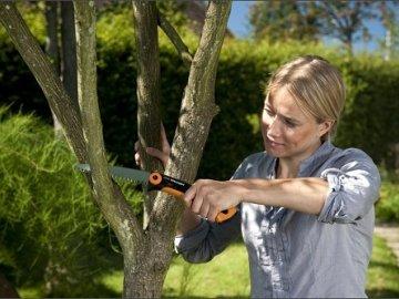Типы обрезки деревьев