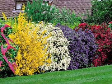 Полезные советы по оформлению садового участка