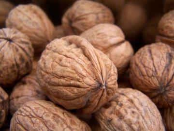 Особенности и способы хранения орехов в скорлупе