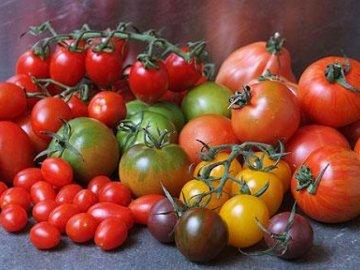 Сорта «разноцветных» томатов