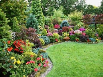 Фото красивых цветущих дач